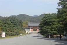 2009_10_17_004