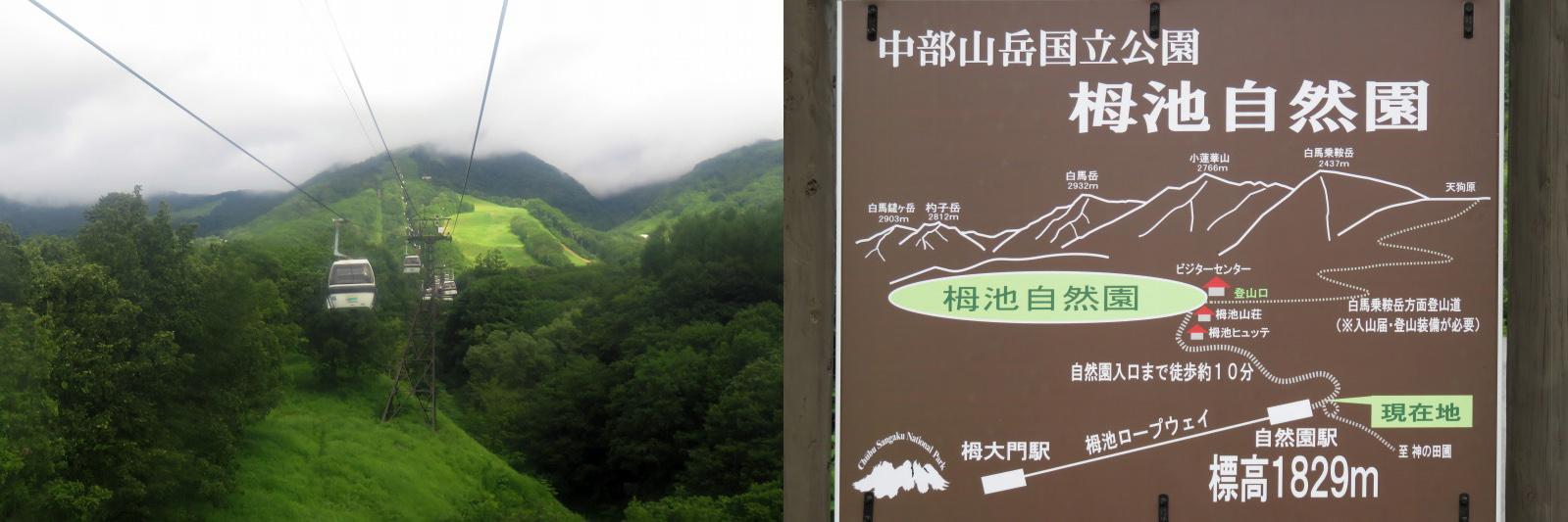 Tsugake01